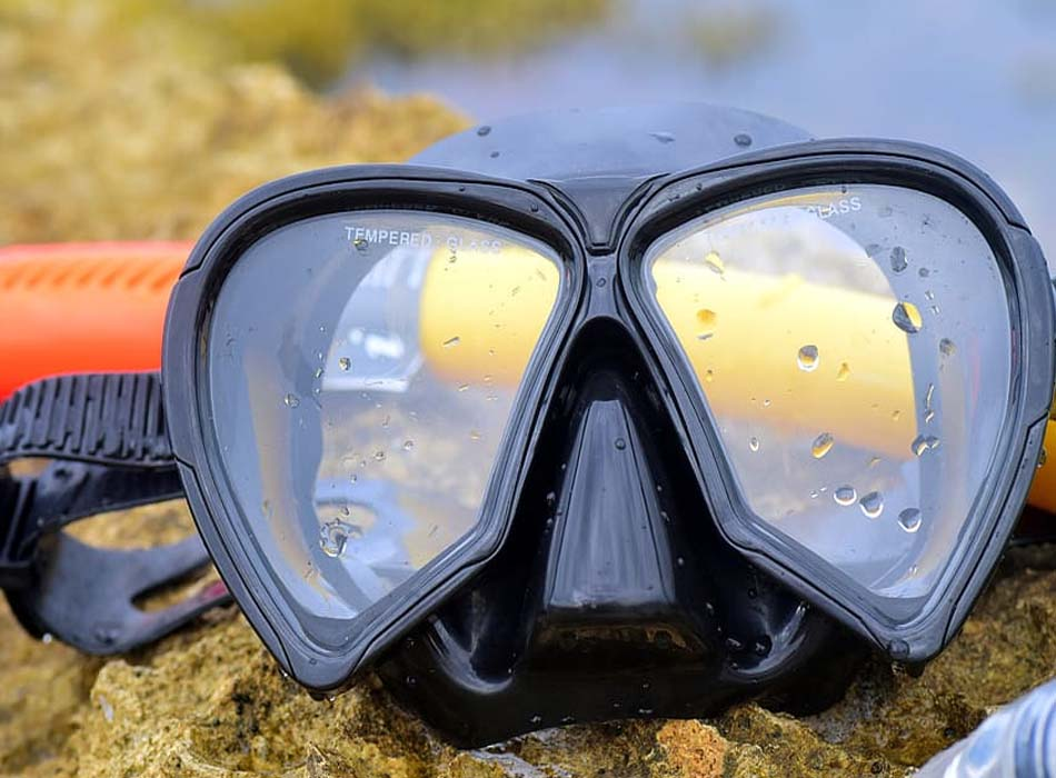 Two-Window Snorkeling Mask