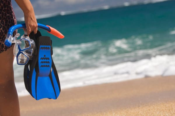 snorkeling valuables